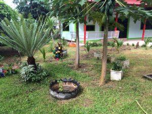 """11. โครงงาน """"ระบบรดน้ำสนามหญ้าอัตโนมัติ"""" โรงเรียนพระปริยัติศาสนาภิพัฒน์วัดเมืองราม จังหวัดน่าน"""